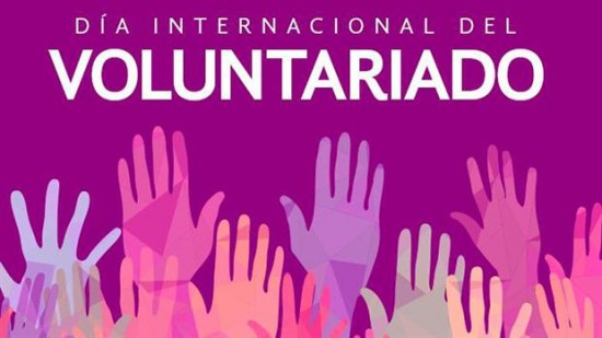 Cartel del Dia del Voluntariado